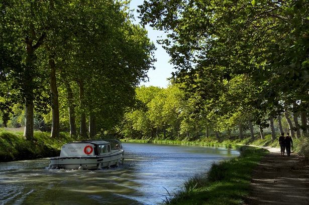 Tres bon: The tree-lined Canal du Midi in France